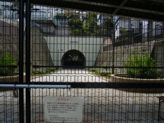 トンネル開門前.JPG